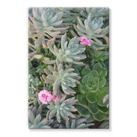 Plant With Pink Flowers Stretched Eco-Canvas 24X36 Wall Decor