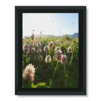 Portulaca Grandiflora Framed Canvas 18X24 Wall Decor