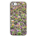 Portulaca Grandiflora Phone Case Iphone 5C / Snap Gloss & Tablet Cases