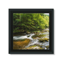 River Surrounded By Trees Framed Canvas 12X12 Wall Decor