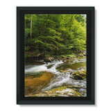 River Surrounded By Trees Framed Canvas 12X16 Wall Decor