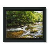 River Surrounded By Trees Framed Canvas 16X12 Wall Decor