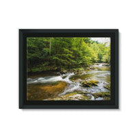River Surrounded By Trees Framed Canvas 24X18 Wall Decor