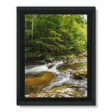 River Surrounded By Trees Framed Canvas 24X32 Wall Decor