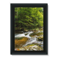 River Surrounded By Trees Framed Canvas 24X36 Wall Decor