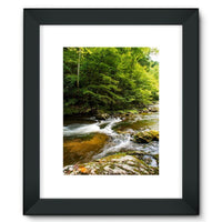 River Surrounded By Trees Framed Fine Art Print 12X16 / Black Wall Decor