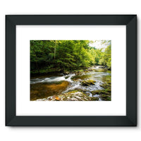 River Surrounded By Trees Framed Fine Art Print 16X12 / Black Wall Decor