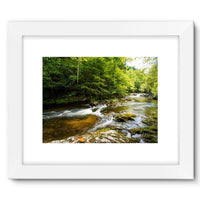 River Surrounded By Trees Framed Fine Art Print 16X12 / White Wall Decor