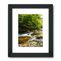 River Surrounded By Trees Framed Fine Art Print 18X24 / Black Wall Decor