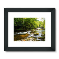 River Surrounded By Trees Framed Fine Art Print 24X18 / Black Wall Decor