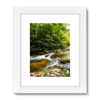 River Surrounded By Trees Framed Fine Art Print 24X32 / White Wall Decor