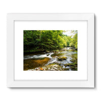 River Surrounded By Trees Framed Fine Art Print 32X24 / White Wall Decor