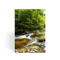 River Surrounded By Trees Greeting Card 1 Prints