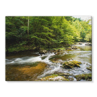 River Surrounded By Trees Stretched Canvas 16X12 Wall Decor