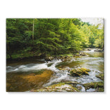 River Surrounded By Trees Stretched Canvas 24X18 Wall Decor