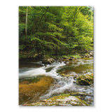 River Surrounded By Trees Stretched Canvas 24X32 Wall Decor