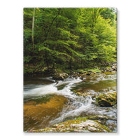 River Surrounded By Trees Stretched Eco-Canvas 18X24 Wall Decor
