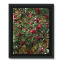 Rowan Berries Framed Eco-Canvas 11X14 Wall Decor