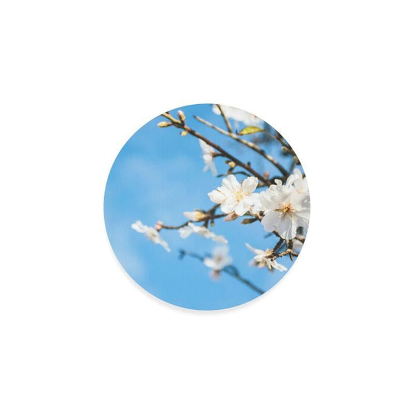 Spring Cherry Trees Drink Beverage Round Coaster