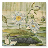 The Waterlilies 1905 Stretched Eco-Canvas 10X10 Wall Decor