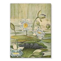 The Waterlilies 1905 Stretched Eco-Canvas 18X24 Wall Decor