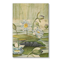 The Waterlilies 1905 Stretched Eco-Canvas 24X36 Wall Decor