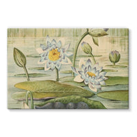 The Waterlilies 1905 Stretched Eco-Canvas 36X24 Wall Decor