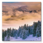 Trees Covered With Mountain Stretched Canvas 10X10 Wall Decor
