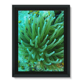 Underwater Coral Reef Framed Canvas 12X16 Wall Decor