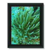 Underwater Coral Reef Framed Canvas 18X24 Wall Decor