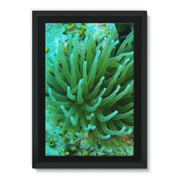 Underwater Coral Reef Framed Canvas 20X30 Wall Decor