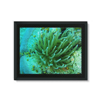 Underwater Coral Reef Framed Canvas 24X18 Wall Decor