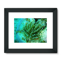 Underwater Coral Reef Framed Fine Art Print 24X18 / Black Wall Decor