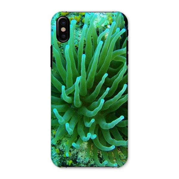 Underwater Coral Reef Phone Case Iphone X / Snap Gloss & Tablet Cases