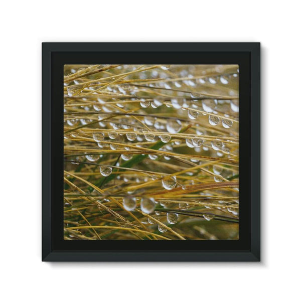 Water Droplets In The Straw Framed Eco-Canvas 10X10 Wall Decor