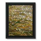 Water Droplets In The Straw Framed Eco-Canvas 11X14 Wall Decor