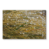 Water Droplets In The Straw Stretched Eco-Canvas 30X20 Wall Decor