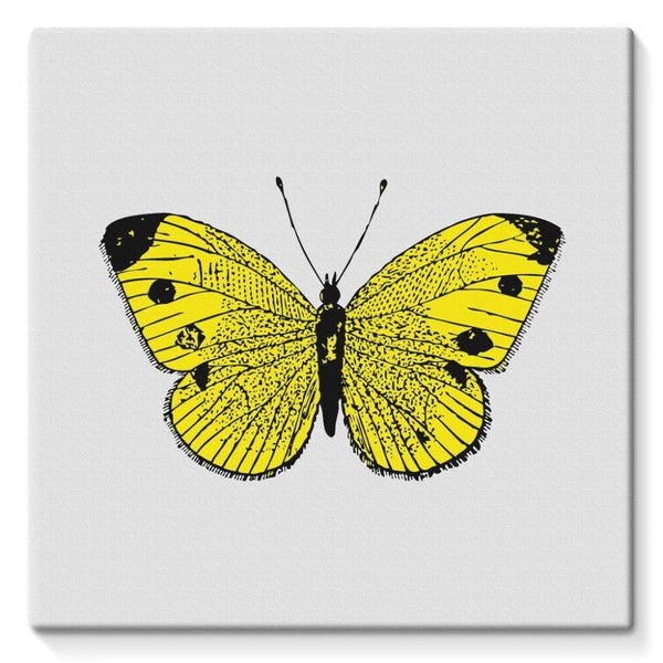 Yellow Comic Butterfly Stretched Canvas 10X10 Wall Decor