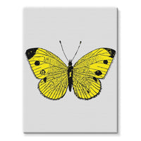 Yellow Comic Butterfly Stretched Canvas 12X16 Wall Decor