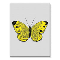 Yellow Comic Butterfly Stretched Canvas 24X32 Wall Decor