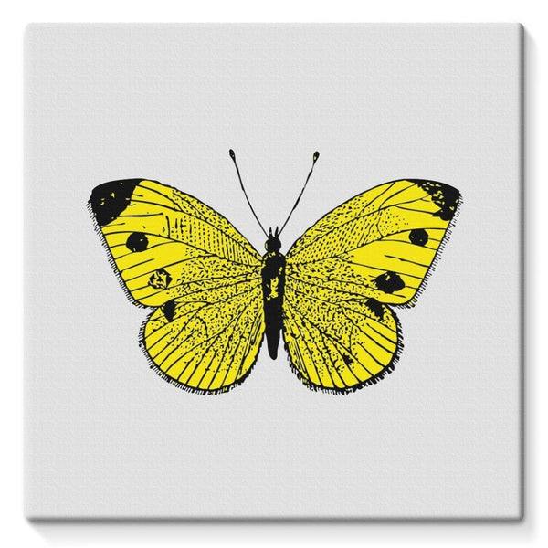 Yellow Comic Butterfly Stretched Eco-Canvas 10X10 Wall Decor