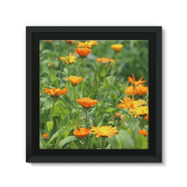 Yellow Flowers Fields Framed Canvas 12X12 Wall Decor