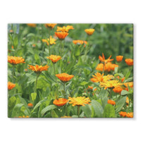 Yellow Flowers Fields Stretched Eco-Canvas 24X18 Wall Decor