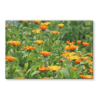 Yellow Flowers Fields Stretched Eco-Canvas 30X20 Wall Decor