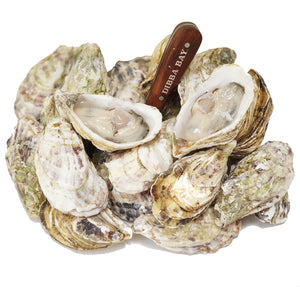 Dibba Bay Oysters - Medium Box No 3 (12 pcs)