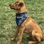 Wildin'-tiedye-dogs-bandana-headband-acidwash-wildinclothingco
