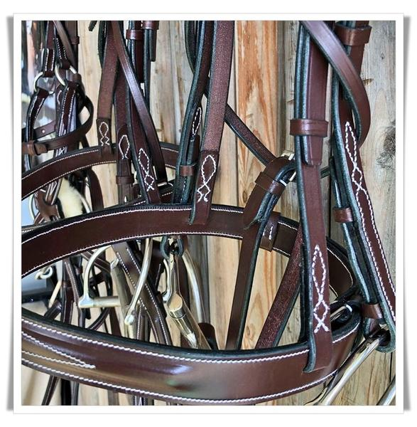 The Search For The Perfect Bridle