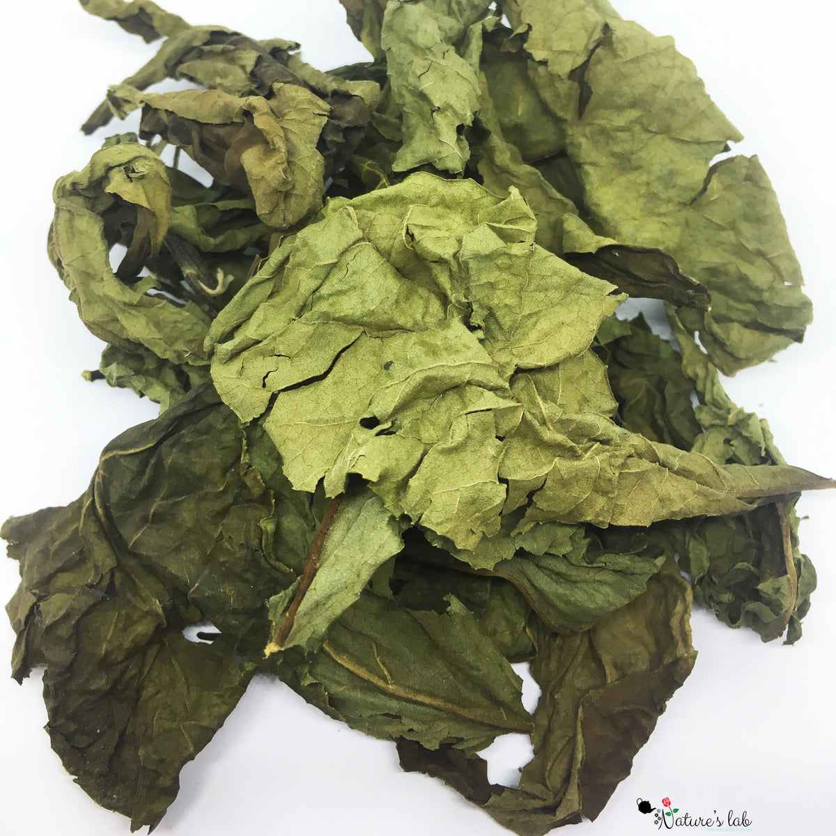 Organic Bitter leaf/South African Leaf Tea 纯天然有机南非苦叶(斑鸠菊)茶