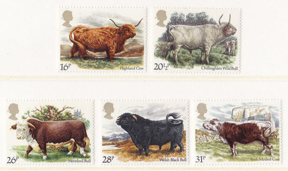 1984 British Cattle