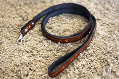 1 Inch Custom Leather Dog Leash